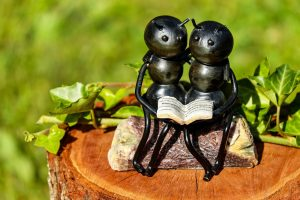 ants as book lovers