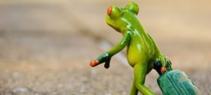 Picture of a frog with a suitcase