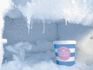 An empty freezer with only ice-cream will make time for your relocation while still working