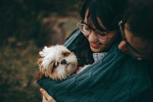Spreading love will help your pet adapt to the new surroundings