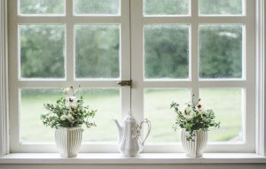 flowers in front of windows