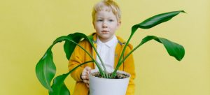Kid carrying a plant